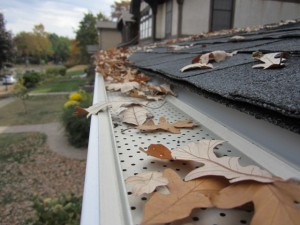Leaf Relief gutter covers
