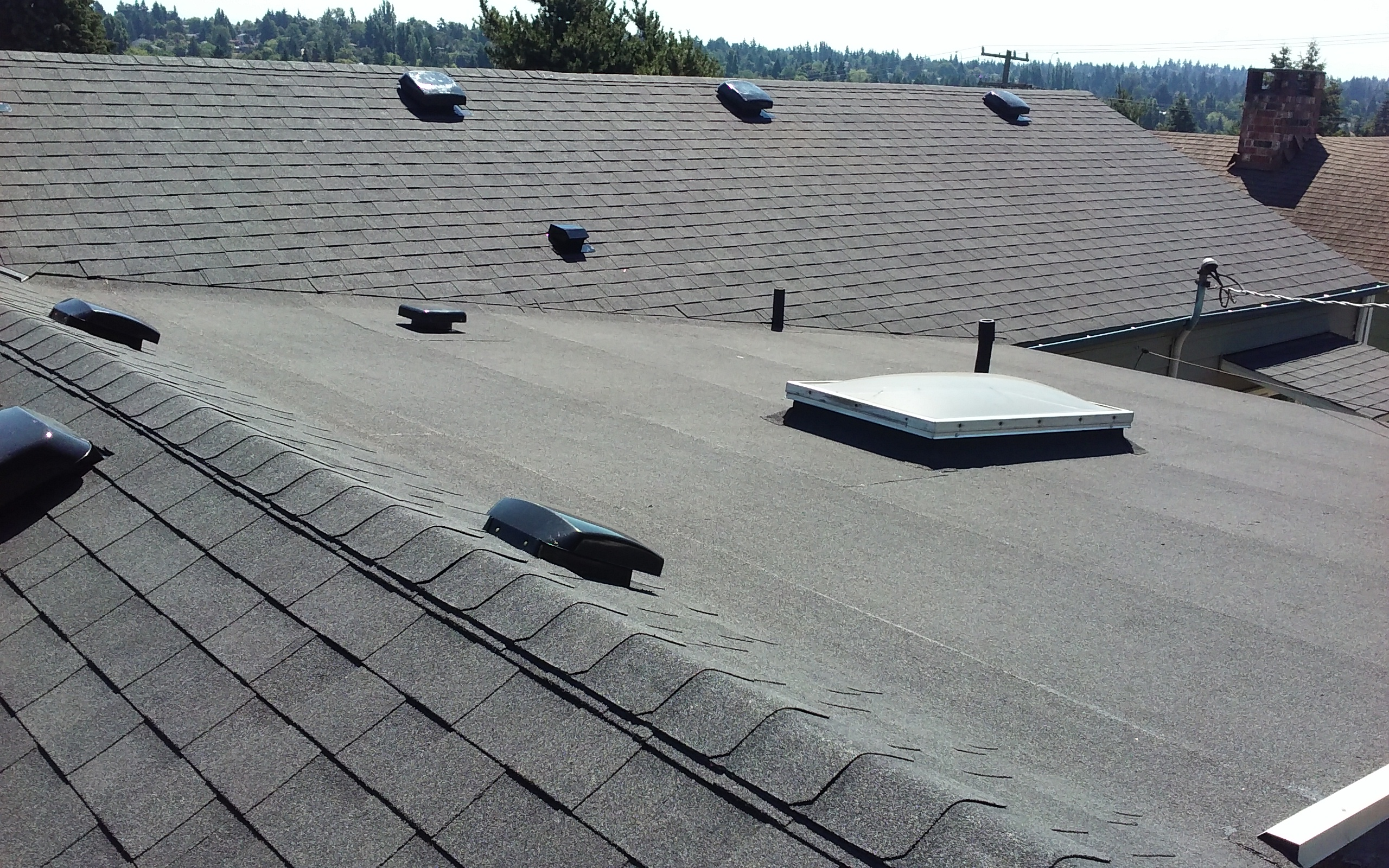 shingle roofing and torchdown roofing were used